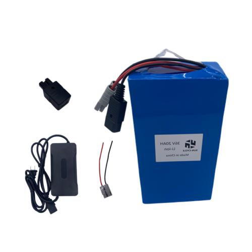 ebike lithium battery 36v20ah charger bms rechargeable